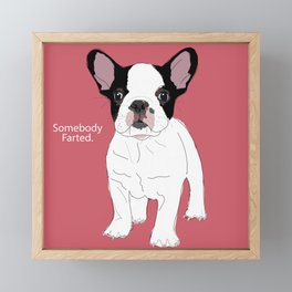 Somebody farted - Frenchie dog (pink) Framed Mini Art Print