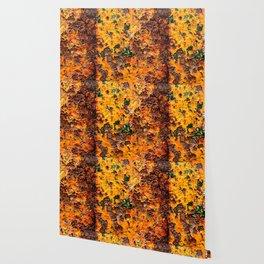 Lost Tonka Wallpaper