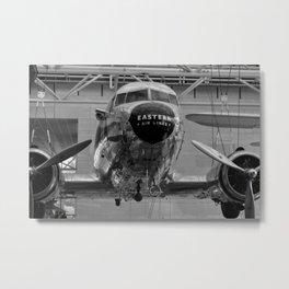 Flying High Metal Print