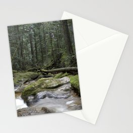 coastal rainforest Stationery Cards