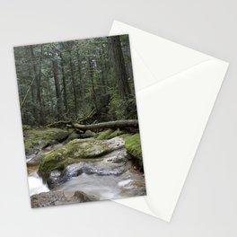 coastal rainforest Stationery Cards