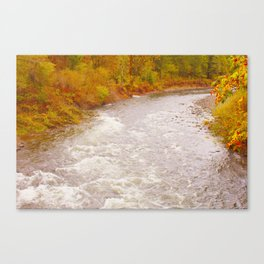 tillamook forest Canvas Print
