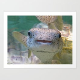 Smiling Fish Art Print