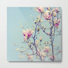 Sweet magnolia 2 Metal Print