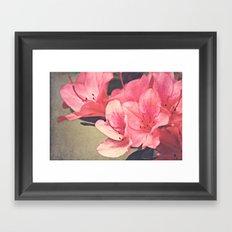 Strawberry Flowers Framed Art Print
