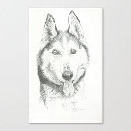 Marc-R Canvas Print