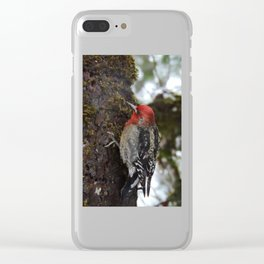 Red-Breasted Sapsucker in Christmas Snow Clear iPhone Case