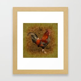 ROOSTER - 026 Framed Art Print