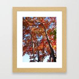 change of season Framed Art Print