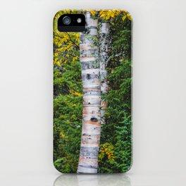 Artist Point Trail, Grand Marais, Minnesota 26 iPhone Case