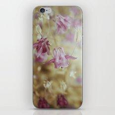 Pale Beauties iPhone & iPod Skin