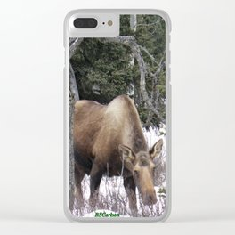 Roadside Browse Clear iPhone Case