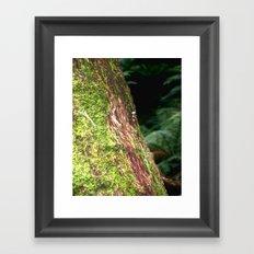 Moss & Fungi Tree Framed Art Print