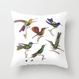Six Colorful Hummingbirds Throw Pillow