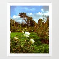 Garden, Paris, France, 2009 Art Print