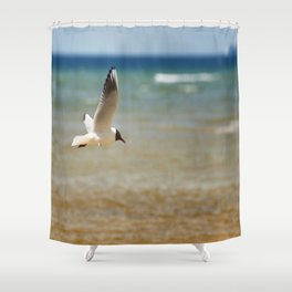 Seagull over the sea Shower Curtain