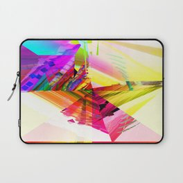 V2R31 Laptop Sleeve