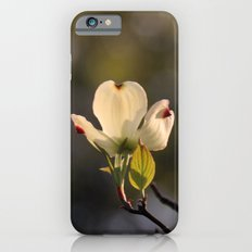 Vanima Slim Case iPhone 6s