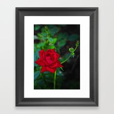 The Watchful Mother Framed Art Print