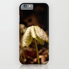 Natures Little Umbrella  Slim Case iPhone 6s