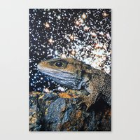 lizard Canvas Prints featuring Lizard by John Turck