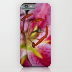 Pink Lily. Slim Case iPhone 6s