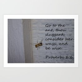 Proverbs 6 Art Print