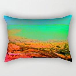X2785-0017 (2013) Rectangular Pillow