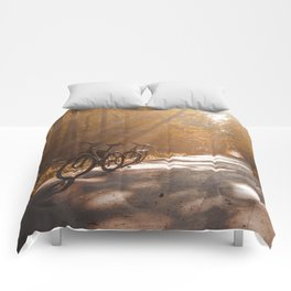 Morning Autumn Forest Comforters