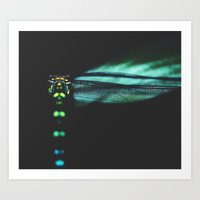 dragonfly Art Prints featuring dragonfly by Ingrid Beddoes photography