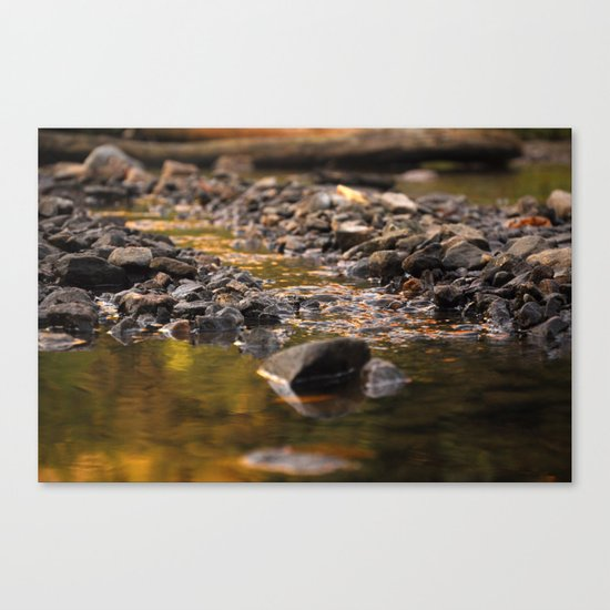 Little stream Canvas Print