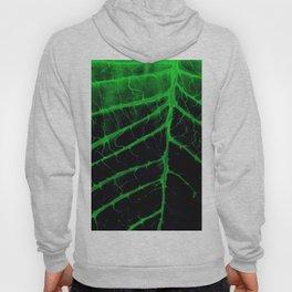 Leafy Organic Hoody