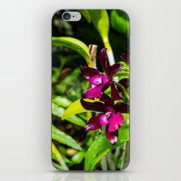 dark purple orchids iPhone Skin