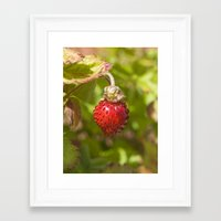 strawberry Framed Art Prints featuring Strawberry by PICSL8