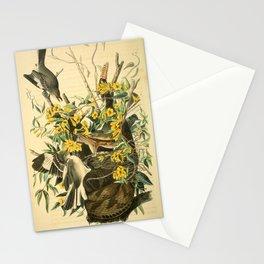 Northern mockingbird Stationery Cards