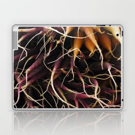 Carrot Colors Laptop & iPad Skin