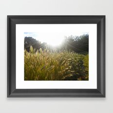 Wheat and poppies Framed Art Print