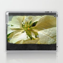 Pale Yellow Poinsettia 1 Blank P4F0 Laptop & iPad Skin