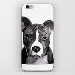 Pit Bull Dogs Lovers iPhone Skin
