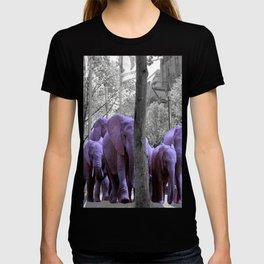 Purple guests T-shirt