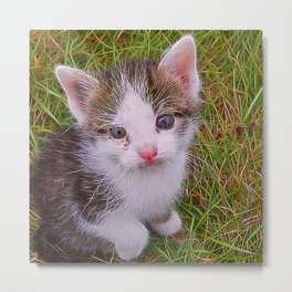 Extraordinary animals-Kitten Metal Print