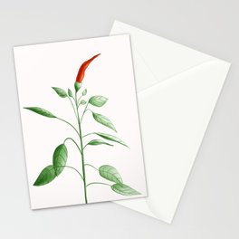Little Hot Chili Pepper Plant Stationery Cards
