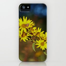 Kansas Wild Sunflowers shot closeup with green and blue back ground iPhone Case