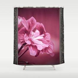 Ivy Geranium named Contessa Purple Bicolor Shower Curtain
