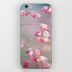 Afternoon Delight iPhone & iPod Skin