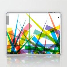 Spiky Garden Laptop & iPad Skin