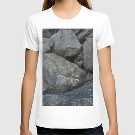 Rocks of Puget Sound T-shirt