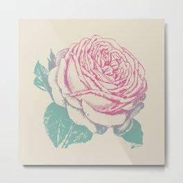 rosa rosae rosarum Metal Print