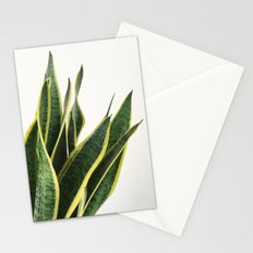 Sansevieria Stationery Cards