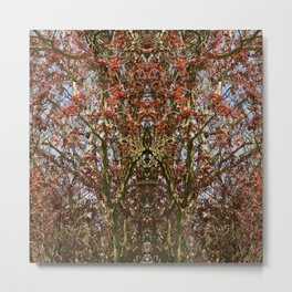 Red Leaves, Fall. Metal Print